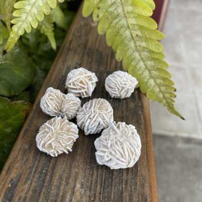 small desert rose wrapping rock