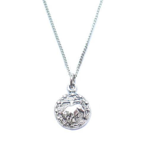 AS tiny zodiac necklace - taurus
